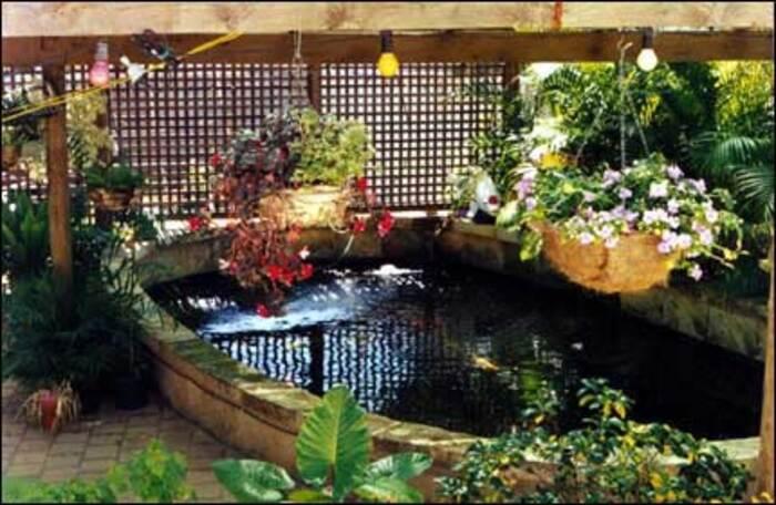 Koi society of western australia for Portable koi pond